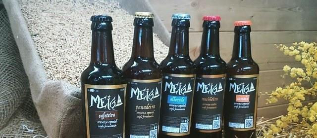 Descubre Nuestras Selección de Cervezas